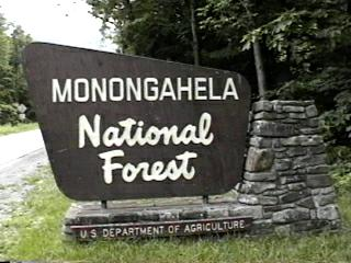 Monongahela National Forest Campgrounds